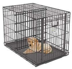 What size dog crate for a puppy - use a divider