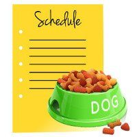 Green dog bowl of food beside a yellow blank schedule