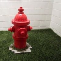Indoor fake grass and red fire hydrant