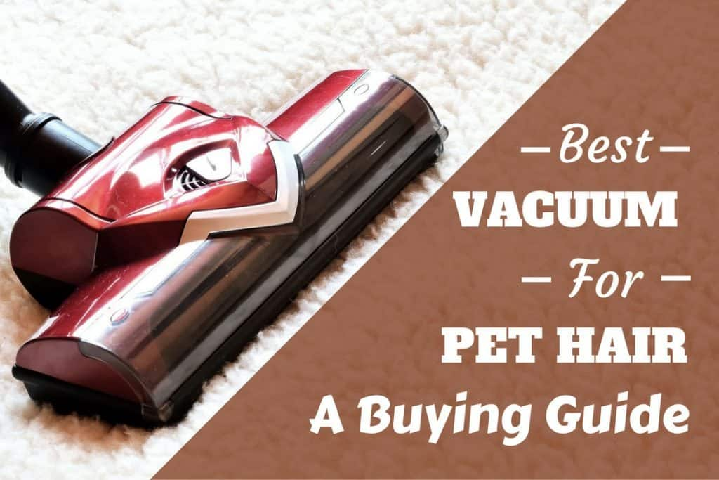 Hate Dog Hair At Home Best Pet Vacuum Buying Guide And