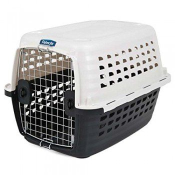 Petmate Compass Plastic Pets Kennel on white bg