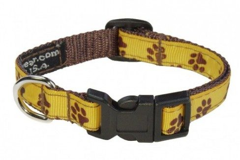 Yellow collar with paw print design and plastic buckle on white bg