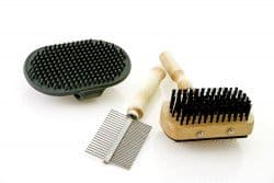 Dog grooming tools on white background
