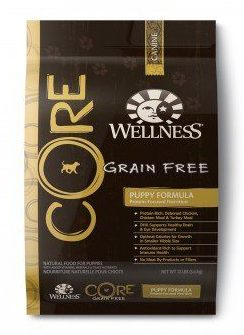 Brown bag of wellness core puppy food on white bg