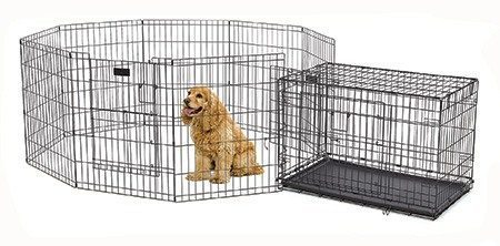Exercise pen and crate combination