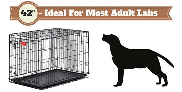 42 inch crate for labs - Complete Guide On What Size Dog Crate You Should Get And Which Type Is Best?