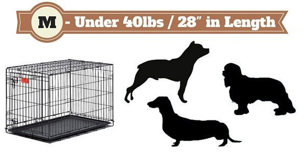 Silhouette of 3 dogs next to a medium size dog crate on white bg