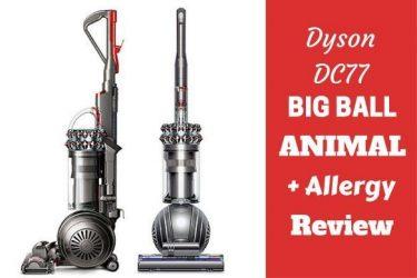 Dyson DC 77 big ball animal plus allergy on white bg