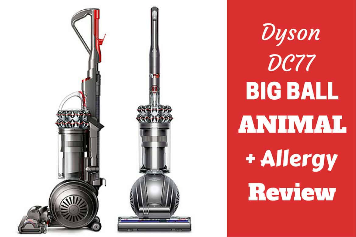 Dyson DC 77 big ball animal plus allergy on white bg