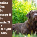 Frontline vs Advantix vs Advantage Flea Treatments – Which is Best?