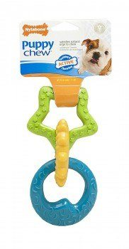 Nylabone ring bone chew toy isolated on white