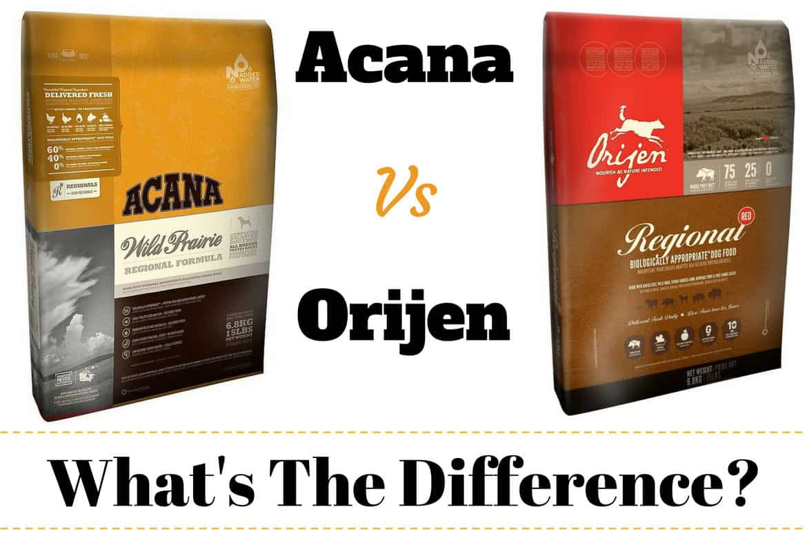 Acana vs Orijen written between a bag of each brand of dog food on white bg