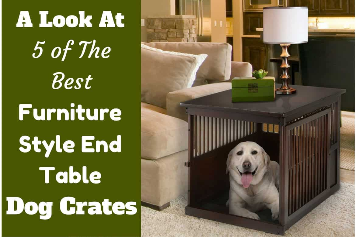 furniture pet crate. Best Furniture Style End Table Dog Crates Written Beside A Labrador Inside Such Crate Pet