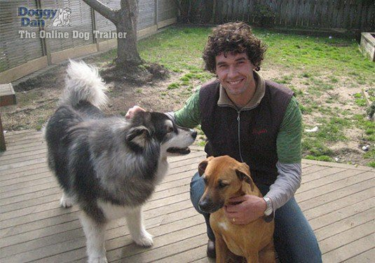 Dan kneeling on boardwalk with two dogs smiling into camera