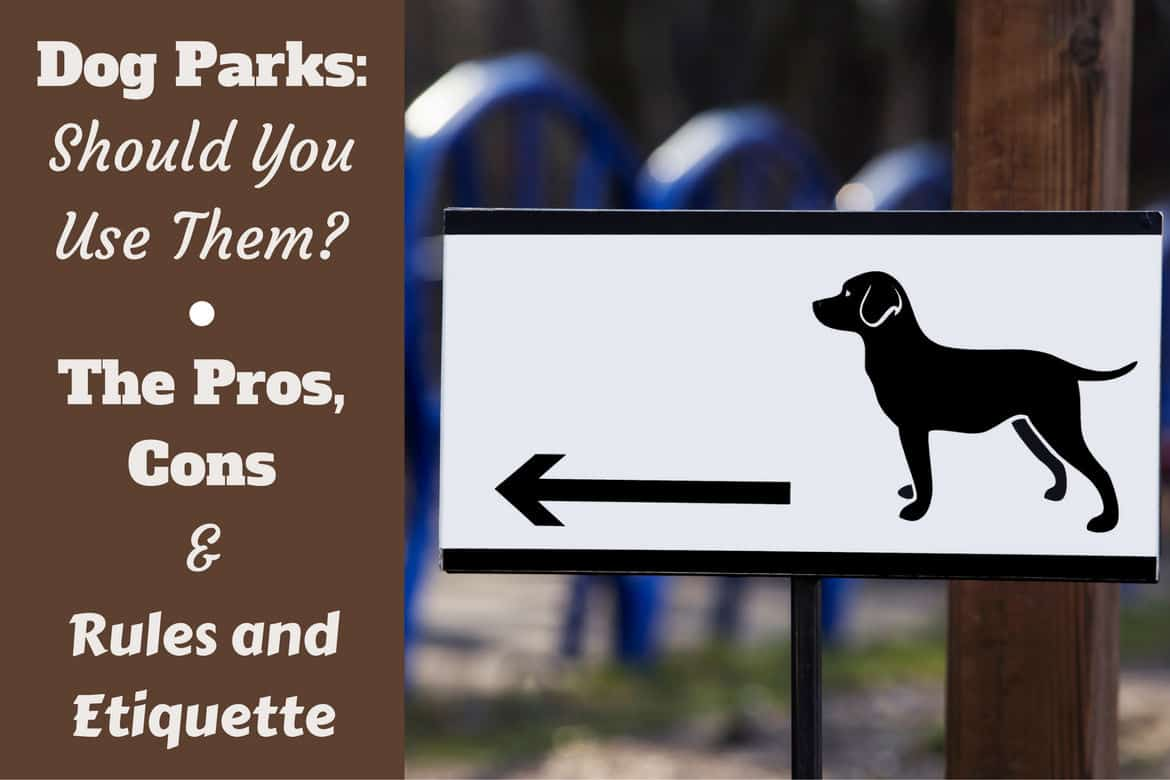 Dog park rules and etiquette writte beside a sign pointing to a dog park