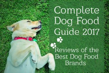 Best Dog Foods: Our Complete Guide For 2020
