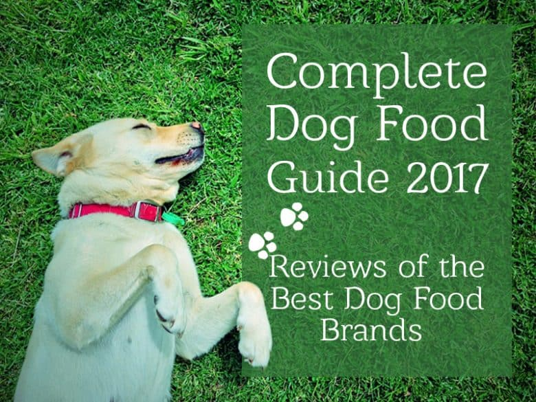 Best Dog Foods: Our Complete Guide For 2017
