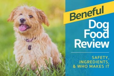Beneful Dog Food Review – Safety, Ingredients, & Who Makes It