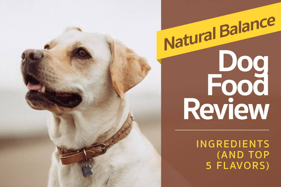 Natural Balance Dog Food Reviews, Ingredients (And Top 5 Flavors) | Natural Balance Dog Food Allergies