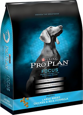 Purina Pro Plan Reviews: The Brand's Top 5 Pet Foods