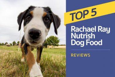 Top 5 Rachael Ray Nutrish Dog Food Reviews (2020 Ratings)