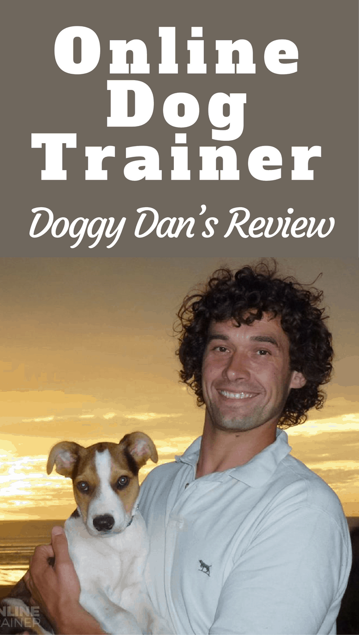 In our Doggy Dan's online dog trainer review, we discuss what it contains, how it works, why it's endorsed by the NZSCPA and why we happily recommend it.
