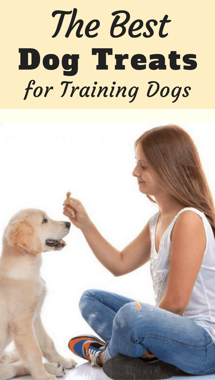 The best dog treats for training puppies or dogs for Best dogs for you