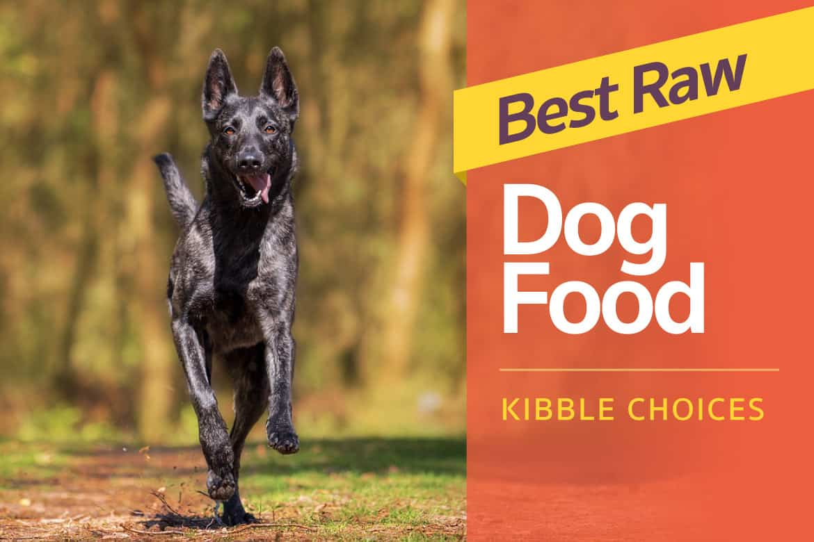 4 Best Raw Dog Food Best Raw Puppy Food Kibble Choices To Make