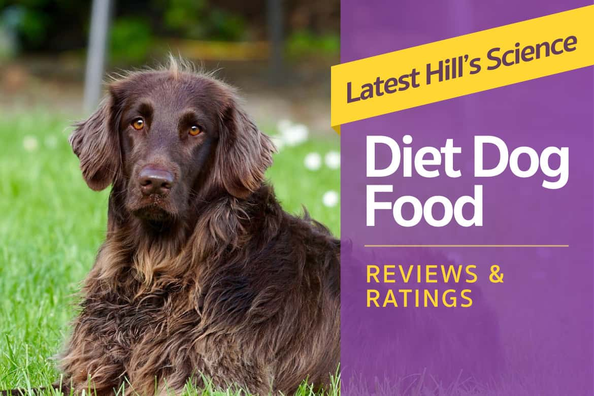 What Are The Rating On Science Diet Dog Food