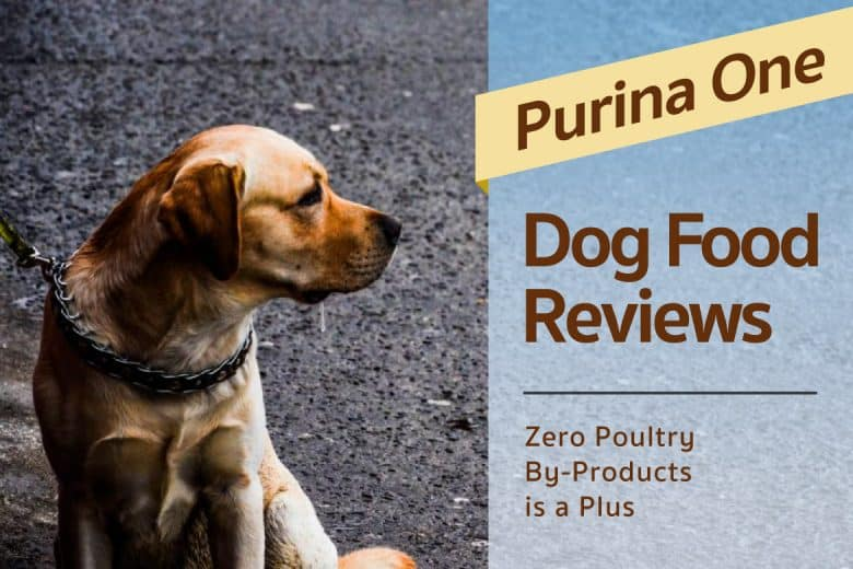 Purina One Dog Food Review Zero Poultry By Products Is A Plus
