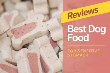 Reviews: Best Dog Food For Sensitive Stomachs