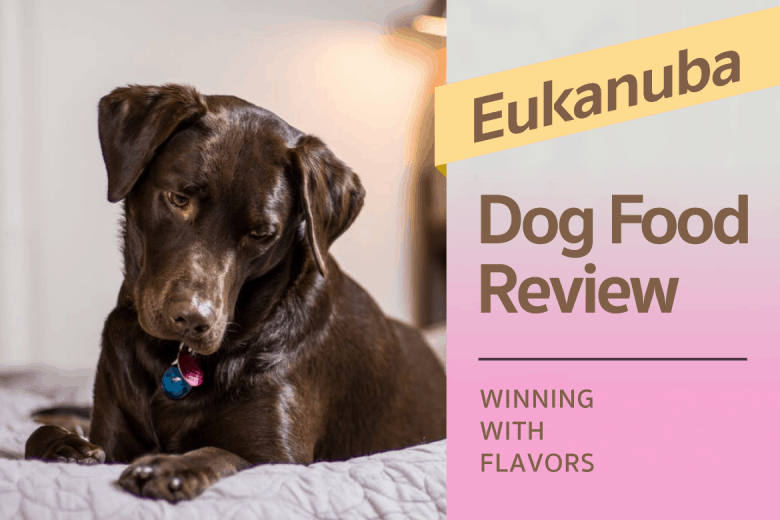 Eukanuba Dog Food Review: Winning with the Flavors