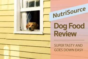 Nutrisource Dog Food Review: Super Tasty and Goes Down Easy