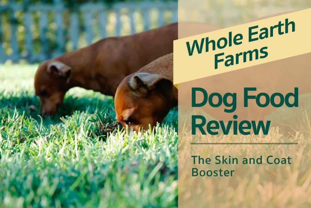 Whole Earth Foods For Dogs