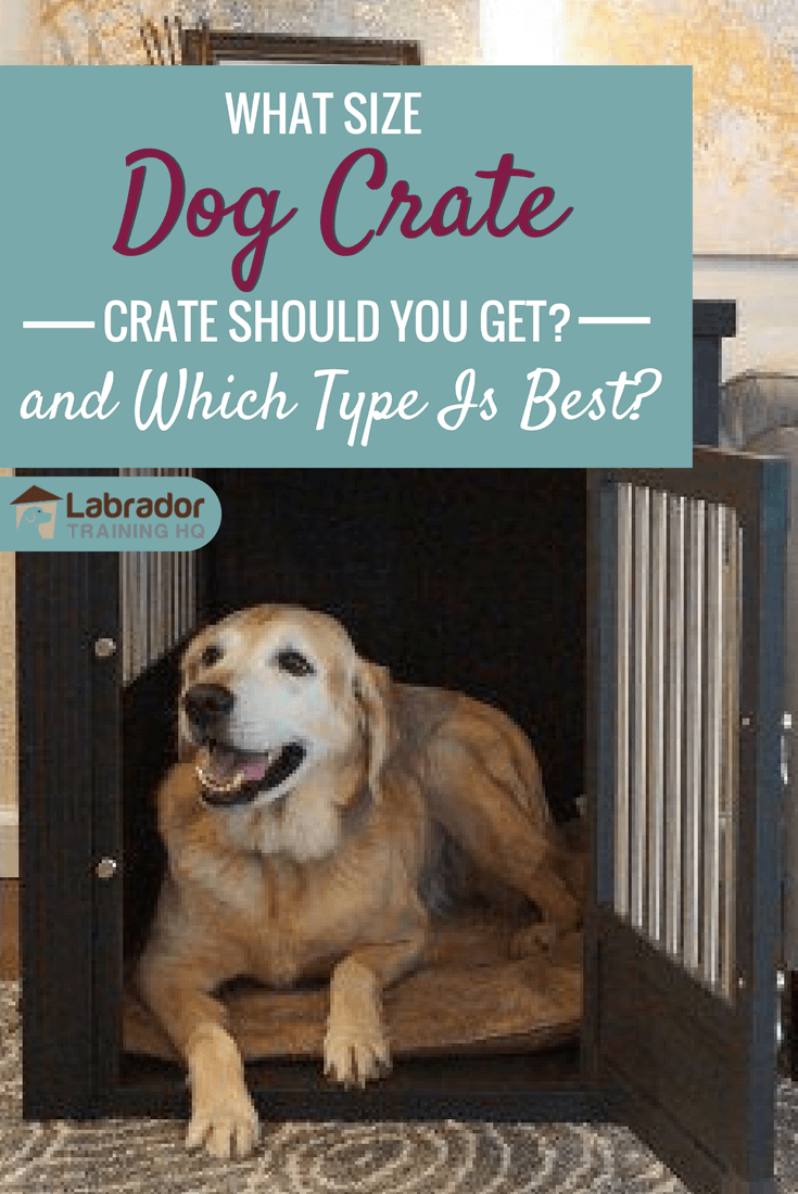What size dog crate and which type of dog crate should you buy? With so many options, it can be overwhelming. This article will help you decide.