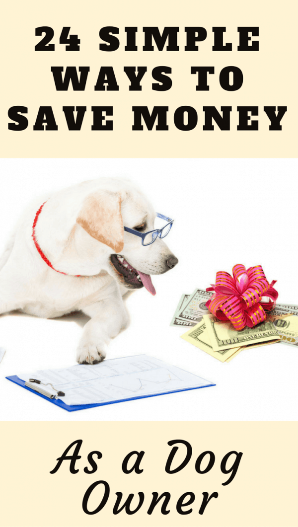 Owning pets is expensive. Money well spent, but expensive, So in this article we show you how to save money as a dog owner, keeping more in your wallet.