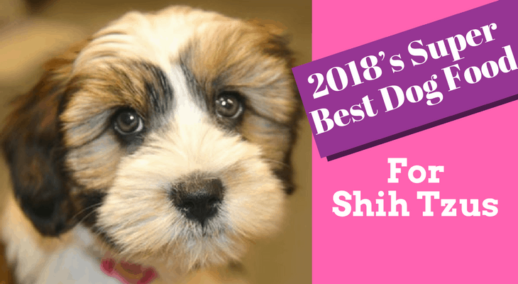 2018 S Super Best Dog Food For Shih Tzus Never Let Your Dog Suffer