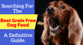 best grain free dog food