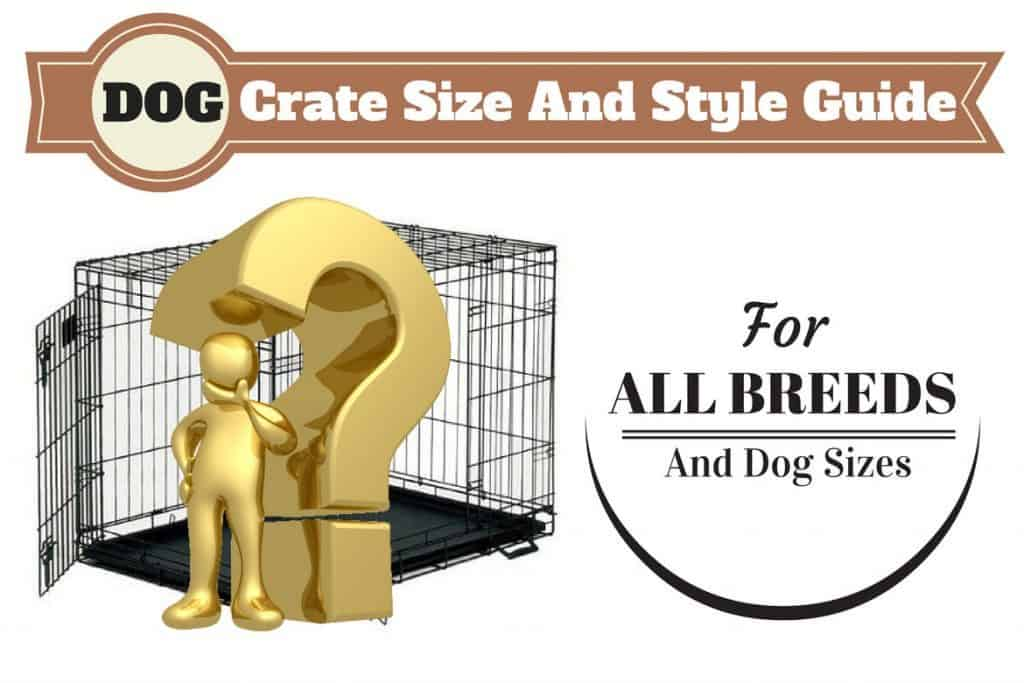 Door dog crate size guide written above a gold man and question mark in front of dog crate