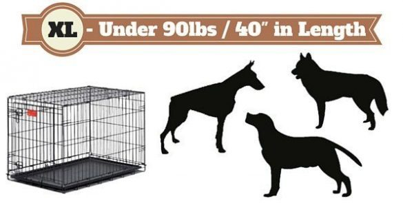 dog crates in xl-size next to 3 silhouette dogs