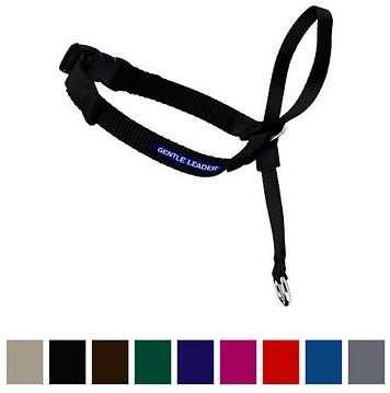 Gentle Leader Dog Halti - Black gentle leader used for dogs that pull with color chart