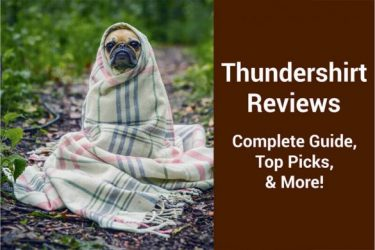Thundershirt Reviews [2019 Edition]: Complete Guide, Top Picks, & More!