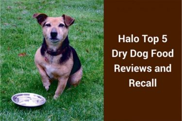 Halo Top 5 Dry Dog Food Reviews and Recall – Are They a Good Brand (2019)