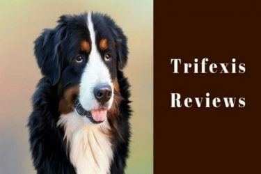 trifexis reviews