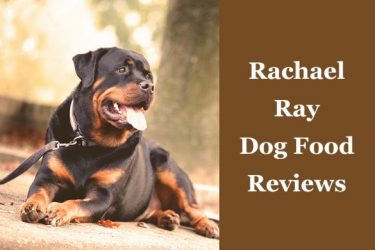 Rachael Ray Dog Food ReviewsRachael Ray Dog Food Reviews