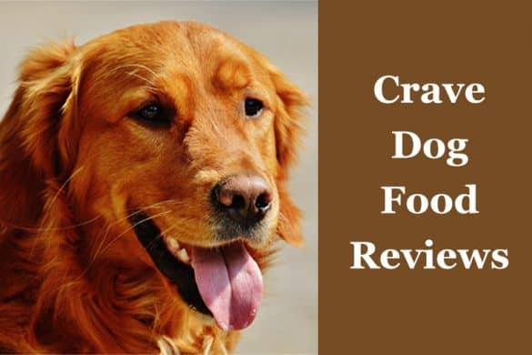 crave dog food reviews