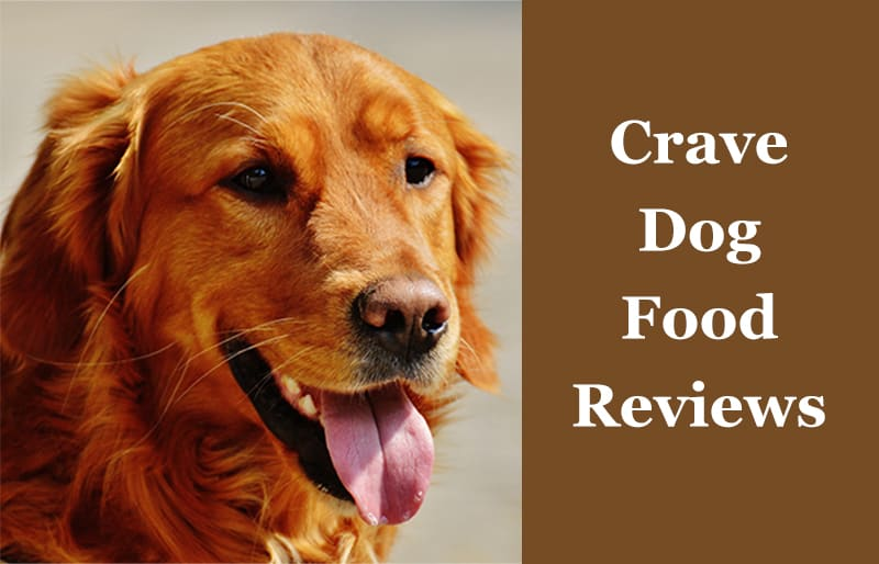 Crave Dog Food Reviews Are They A Good Brand 2019