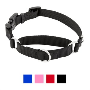 Frisco Solid Martingale Dog Collar With Buckle