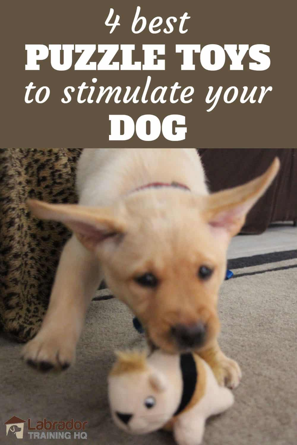 4 Best Puzzle Toys To Stimulate Your Dog - Yellow Lab puppy playing with plush stuffed squirrel toy